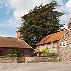 Building, Houses, Traditionsl, Weybourne, Norfolk by Hugh McKean