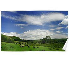 The Fields of Cwmllwydrew Poster