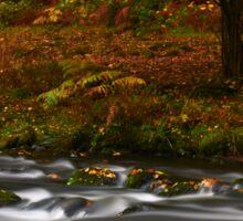 Autumn Flow Sticker