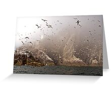 The Gannets of Bass Rock in the Mist Greeting Card