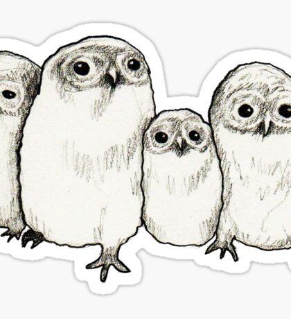 Owlets Sticker