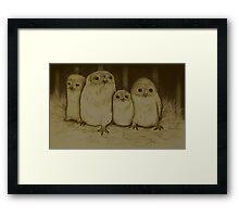 Owlets Framed Print