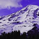 Purple Mt. Rainier by Tori Snow