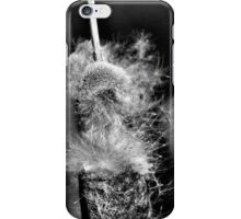 Grey Tails II iPhone Case/Skin