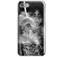 Grey Tails II iPhone Case/Skin