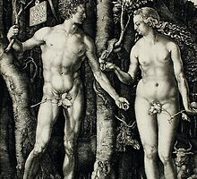 Adam and Eve by Albrecht Durer by mosfunky