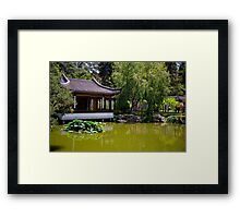 Chinese Pond Framed Print