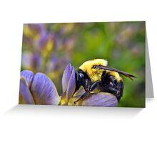 Sweet Sweet Pollen Greeting Card