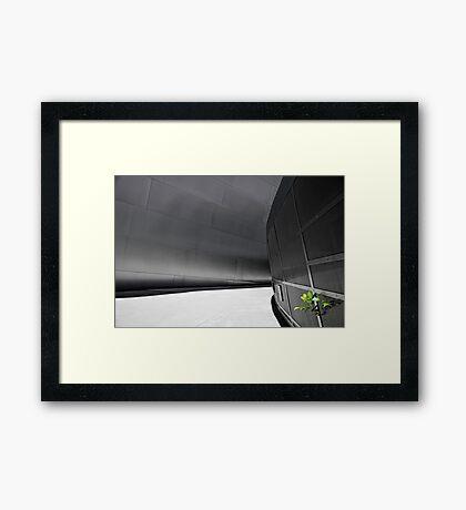 Disney Leaf Framed Print