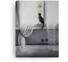 My Bathroom with Cat Canvas Print