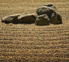 Zen Garden by jswolfphoto