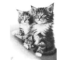 Double Dose of Cuteness Photographic Print