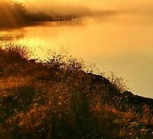 Coquille River at Sunrise by Randy Richards