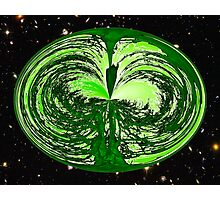 The Wise Old Tree of Life No8 Photographic Print