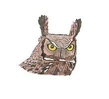 Owl watercolour pencil sketch Photographic Print