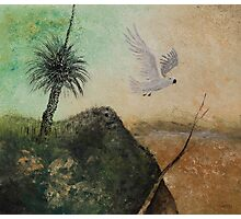 LANDSCAPE OF THE LOST COCKATOO Photographic Print