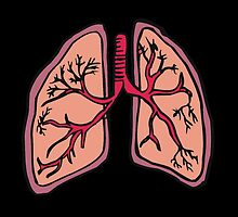 Funny cartoon lungs - Respiratory system by MagicRoundabout