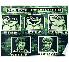 Battletoads - Select Character Poster