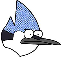 Mordecai annoyed face Photographic Print