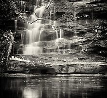 Elegant Waterfall by Jill Fisher