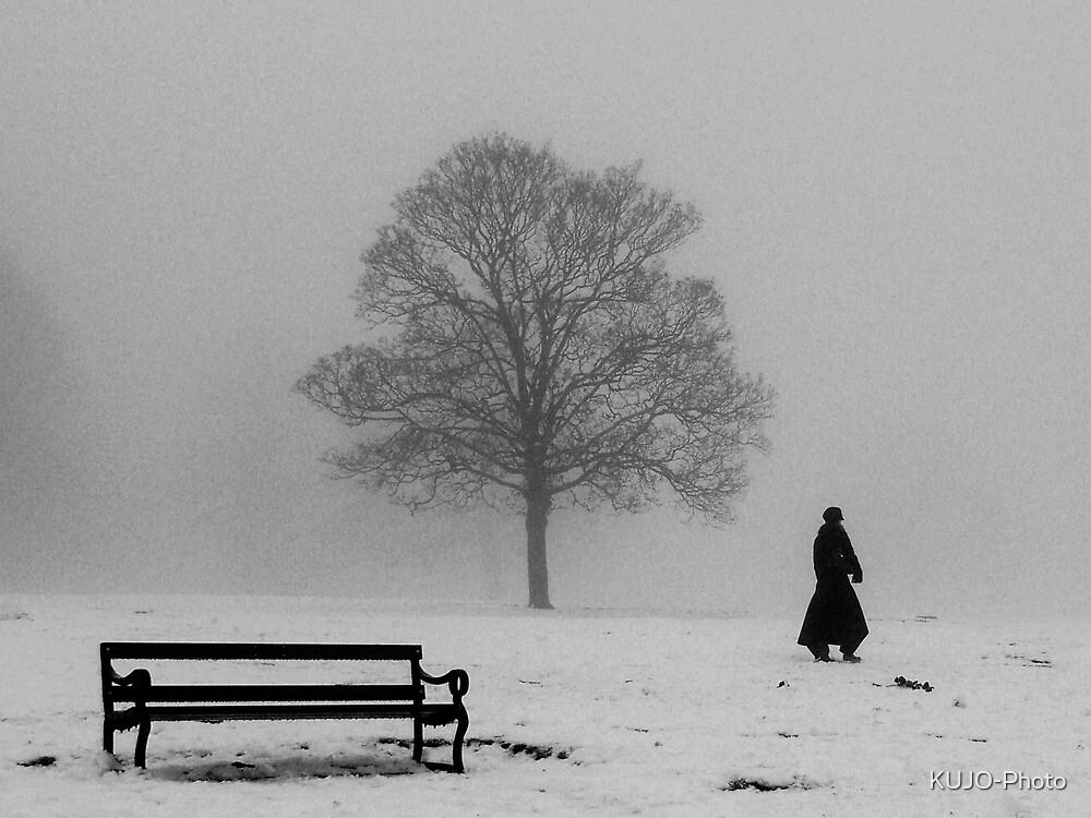Winter Morning Walk by KUJO-Photo