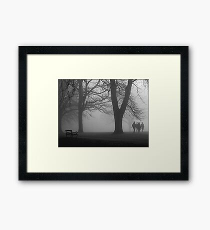 Misty Morning in the Park Framed Print