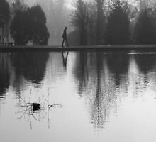 Foggy Morning, Reflection by KUJO-Photo