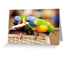 """Lorikeets"" Greeting Card"