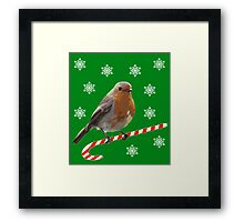 Robin Candy Framed Print