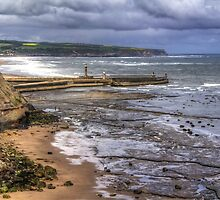 Whitby Harbour from the Coastal Path by Tom Gomez
