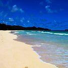 Bellows Beach (Oahu) II by ZWC Photography