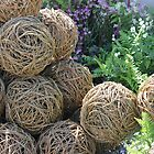 Wooden spheres  by GrAPE