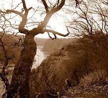 Rhine with view over to the Loreley, Germany by Katy Marriott