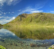 Levers Water Plus... by Jamie  Green