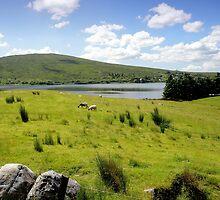 Lushville by Irish-Nostalgia