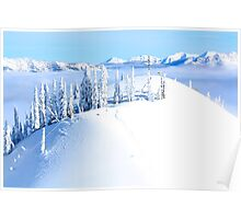 Trees on Whitepass Poster