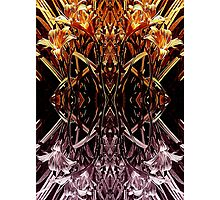 Garden Variety Abstract Photographic Print