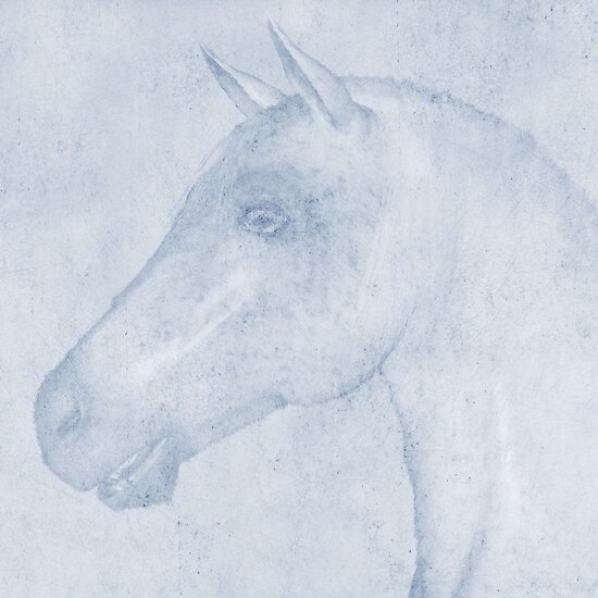Equus by John Edwards