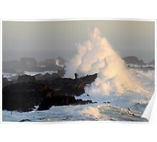 Wave At Salt Point California Poster
