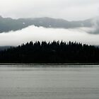 Along the Inside Passage VI by ZWC Photography