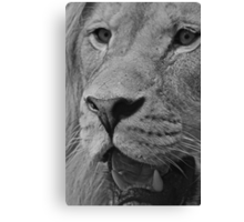 The Face of God Monochrome Canvas Print