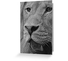 The Face of God Monochrome Greeting Card