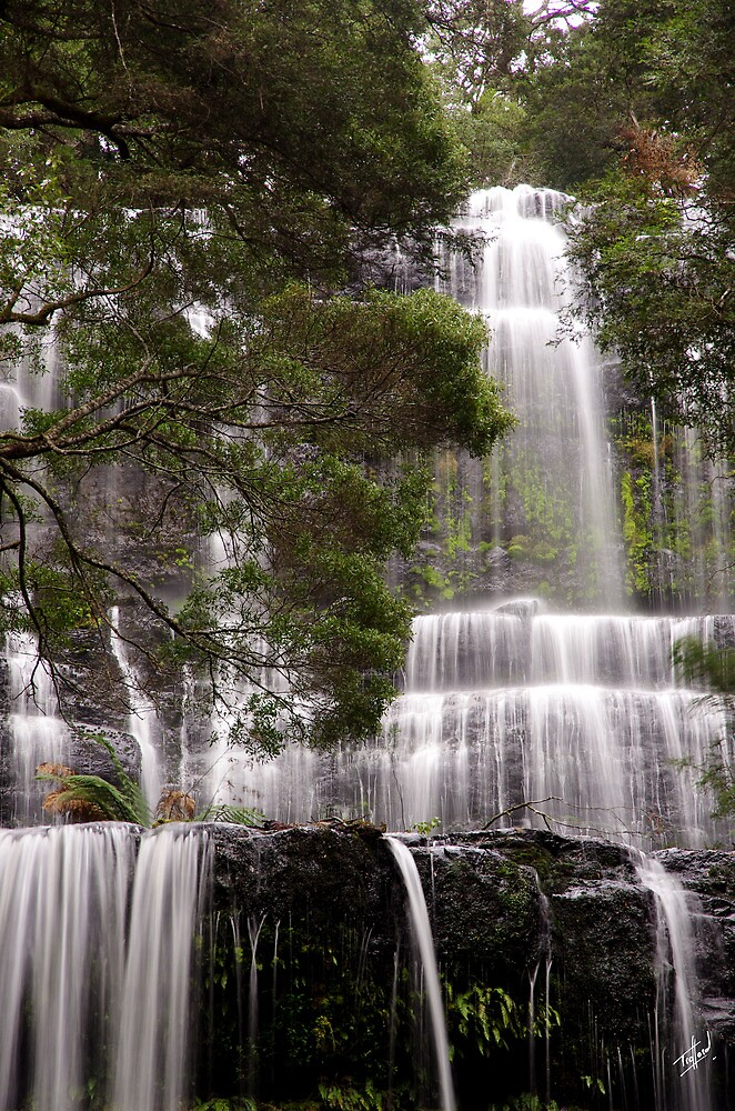 Russell Falls, the middle and upper tiers by Traffordphotos