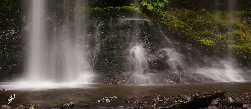Russell Falls, the landing by Traffordphotos