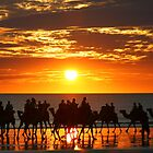Cable Beach Camel Ride by Kangaroojack