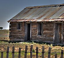Old Shack and Lone Tree by Randy Turnbow