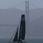 America's Cup in San Francisco by fototaker