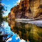 Sandstone Wall - Porcupine Gorge by Stephen  Nicholson