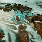 Mossy Point Water by Nick  Taylor