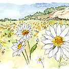 Namaqualand by Maree Clarkson